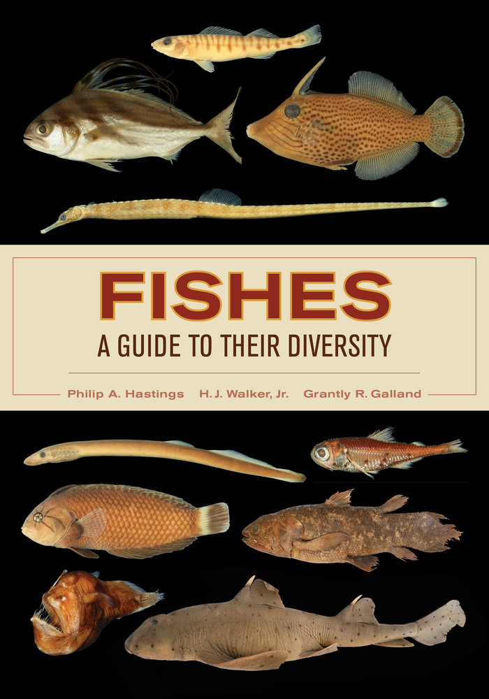 Hastings, Philip A., H. J. Walker, Grantly R. Galland – Fishes: a guide to their diversity.